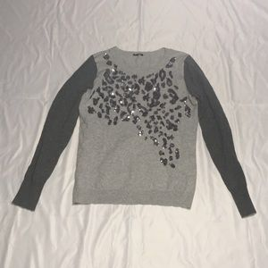 Cleanout! Women's Gray Express Crewneck Sweater